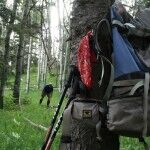 Step Outdoors allows their backpacks to rest